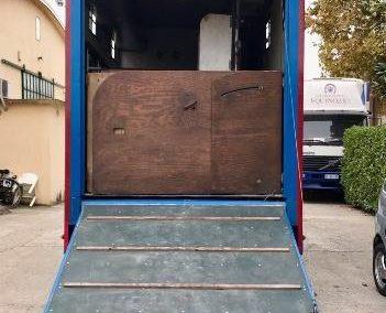 Van Trasporto cavalli FIAT FRANCHIN 115